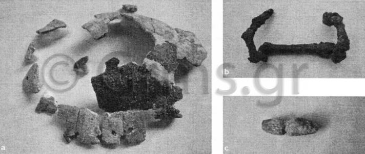 Εικ. 21α. Reggio, Museo Archeologico Nazionale. Χέλυς Λοκρών ΙV (Lepore 2010:454).