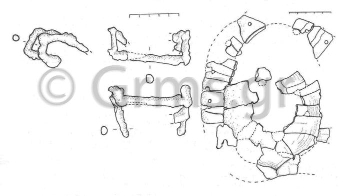 Εικ. 21β. Reggio, Museo Archeologico Nazionale. Χέλυς Λοκρών ΙV, σχέδιο (Lepore 2010:431).
