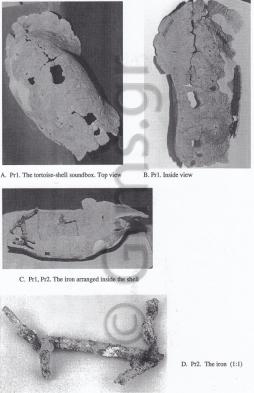 Εικ. 22. Metaponto. Χέλυς Μεταποντίου (Prohaszka 1995).