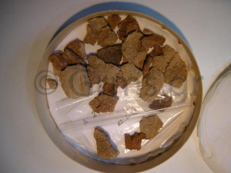 Εικ. 5β. Υπόλοιπα από πλάκες οστράκου στην Αποθήκη του Μουσείου Πειραιώς.