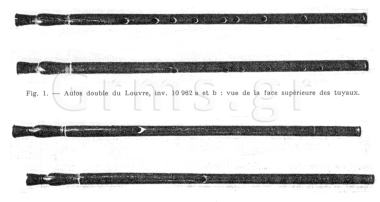 Εικ. 31. Paris, Louvre. Ο αυλός του Λούβρου.
