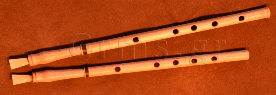 Εικ. 47. Ο αυλός της Δάφνης αποκατεστημένος και ανακατασκευασμένος.