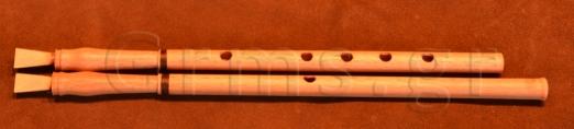 Εικ. 47γ. Ο αυλός της Δάφνης ανακατασκευασμένος (γ).